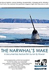 The Narwhal's Wake
